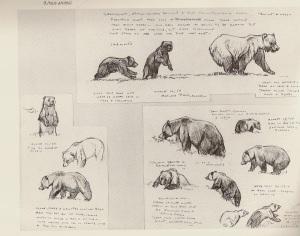 William D. Berry: 1954-1956 Alaskan Field Sketches p 28